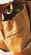 Paper yard waste bags