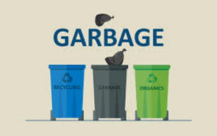 Local Waste Services